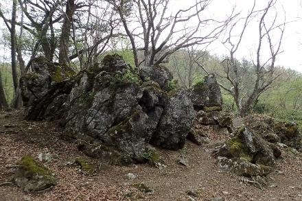 P5070952 岩の群れ(440x293).jpg