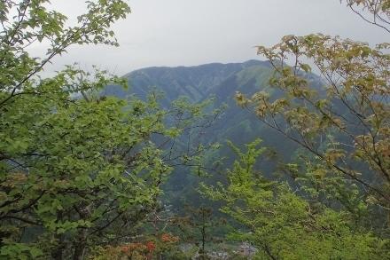 P5141098鷹ノ巣山? (440x293).jpg