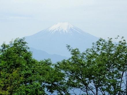 P5172081富士山 権現山より (440x330).jpg