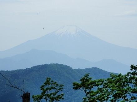 P5172121富士山 雨降山より (440x330).jpg