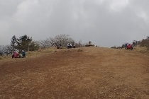 P5191194四季楽園前広場1147 (210x140).jpg