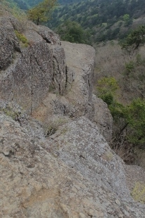 P5191225何岩?1236 (207x310).jpg