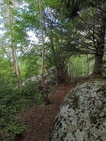 P6181954花崗岩の道1044 (210x280).jpg