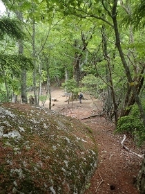 P6181955花崗岩の道1044 (210x280).jpg
