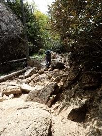 P6181988岩だらけの道1144 (210x280).jpg