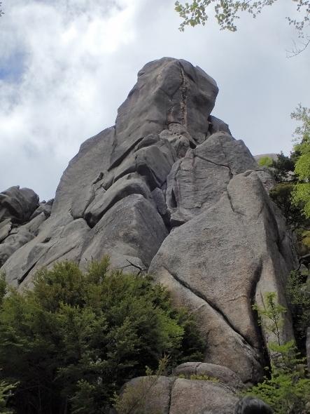 P6182006やすり岩1213 (443x590).jpg