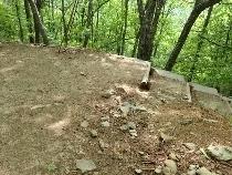 P6182031林道渡り階段下りる1429 (210x158).jpg