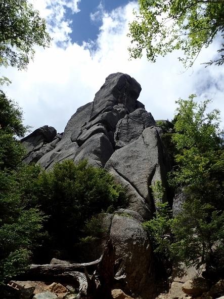 P6252076やすり岩1240 (443x590).jpg