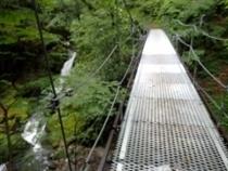 P7084053橋を渡る1024 (210x158).jpg