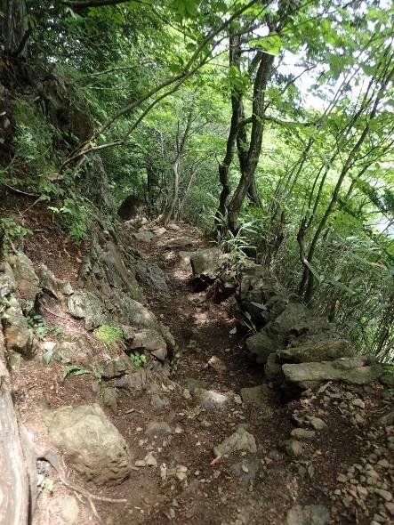 P7134455岩の道1221 (443x590).jpg
