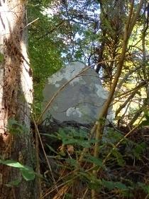 PB017956山の神1027 (210x280).jpg