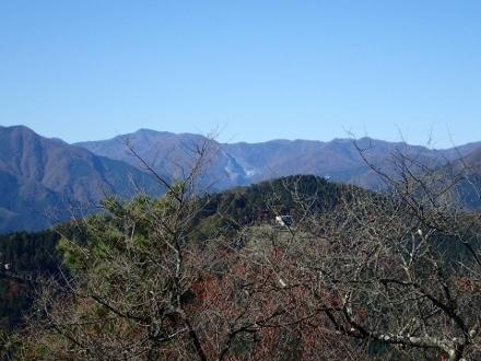 PB018036雲取山 (440x330).jpg